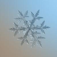 flocon-neige-11-900x675